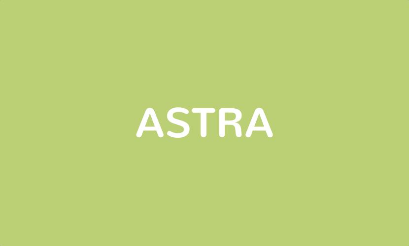 Astra – Das perfekte WordPress-Theme für alle Zwecke?